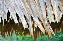 Gammal träkoja Arkivfoto