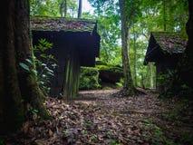 Gammal träkoja i regnskog i dramatisk stil Royaltyfria Bilder