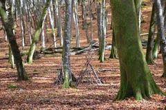 Gammal träkoja i träna Arkivbilder