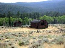 Gammal träladugård i amerikanskt västra Arkivfoton