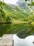 Gammal träpir på sjödammet i sommar Arkivbild