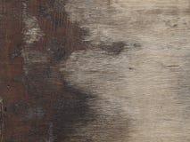 Gammal träplanka Arkivfoton