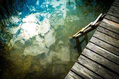 Gammal träplattform på sjön med en stege in i vattnet som förbiser vasserna mot den blåa himlen på en klar solig dag arkivbild
