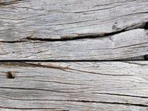 Gammal träspricka, grå färg i horisontallinjen för bakgrund royaltyfri bild