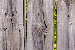 Gammal trästaketgrå färgfärg Arkivfoto