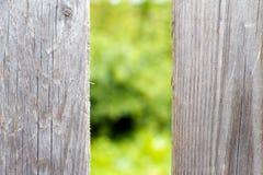 Gammal trästaketgrå färgfärg Royaltyfri Bild