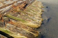 Gammal trästruktur som förfaller i havsvatten arkivfoton