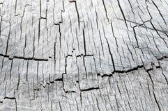 Gammal trätextur av trä i sammanhanget Arkivfoton