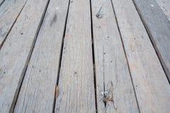 Gammal trätexturerad golvmodell och bakgrund Royaltyfria Foton