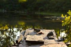 Gammal trätrottoar på sjön royaltyfri bild