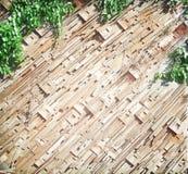 Gammal trävägg i diagonala modeller och gröna växter som hänger på bakgrund royaltyfri foto