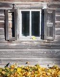 Gammal trävägg med ett fönster Royaltyfria Bilder