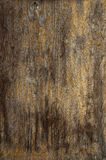 Gammal trävägg - texturstruktur Royaltyfria Bilder