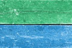Gammal träväggbakgrund Royaltyfri Bild