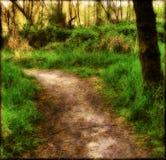 gammal trail Royaltyfria Foton