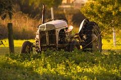 Gammal traktor på soluppgång Royaltyfri Bild