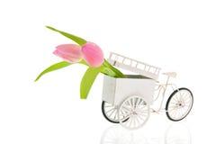 Gammal transportcykel med blommor Arkivbilder