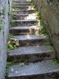 gammal trappa Fotografering för Bildbyråer