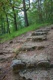 gammal trappa för slott royaltyfri foto