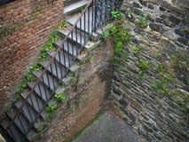 gammal trappa för tegelsten Royaltyfri Bild