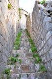 Gammal trappa på stadsväggen i Kotor Arkivbild