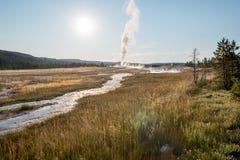 Gammal trogen Geyser i den Yellowstone nationalparken Arkivbild