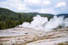 Gammal trogen geyser - Yellowstone nationell park- Nat Yellowstone Arkivfoto