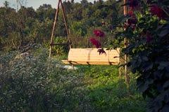 Gammal trätappningträdgårdgunga som hänger från ett stort träd på bakgrund för grönt gräs, i guld- aftonsolljus Royaltyfri Foto