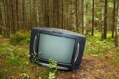 Gammal TV i skogen Arkivfoto