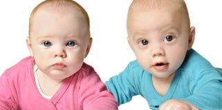Gammal tvilling- syskongrupp för sex månad Royaltyfri Foto
