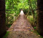 Gammal upphängningbro över floden Royaltyfri Foto