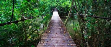 Gammal upphängningbro över floden Arkivbild