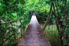 Gammal upphängningbro över floden Royaltyfri Fotografi