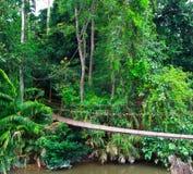 Gammal upphängningbro över floden Royaltyfria Bilder