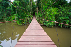 Gammal upphängningbro över floden Fotografering för Bildbyråer