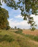 Gammal väderkvarn på Zulawy område i norr Polen Royaltyfria Bilder