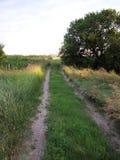 gammal väg för land Arkivbild