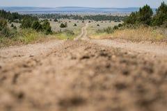 Gammal väg i den Oregon öknen arkivbilder