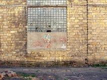 Gammal vägg av en byggnadstegelstencoquina, brutet exponeringsglas Royaltyfria Foton