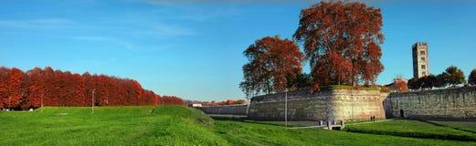 Gammal vägg av staden av Lucca, Italien Royaltyfri Foto