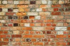 gammal vägg för 01 tegelsten Fotografering för Bildbyråer