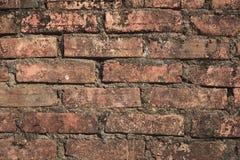 gammal vägg för bakgrundstegelstenbrown Arkivfoton