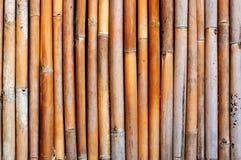 gammal vägg för bambu Fotografering för Bildbyråer