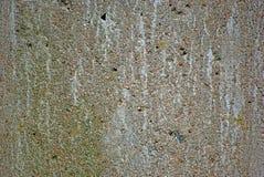 gammal vägg för concret Arkivbilder