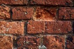 gammal vägg för tegelstenar Arkivfoto