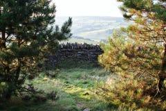 Gammal vägg för torr sten i welsh bygd, berg i bakgrund Arkivfoto