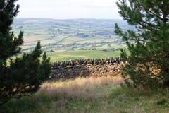 Gammal vägg för torr sten i welsh bygd, berg i bakgrund Royaltyfria Foton