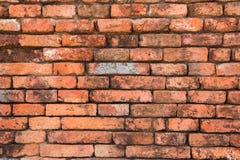 Gammal vägg i templet Royaltyfri Fotografi