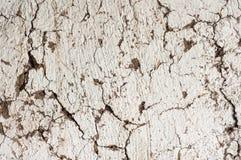 Gammal väggbakgrundstextur Arkivbilder