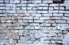 gammal väggwhite för tegelsten Fotografering för Bildbyråer